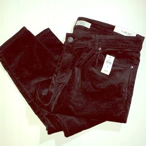 LOFT Plus Modern Skinny Ankle Pants, NWT!